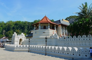 All-Inclusive Private Kandy Day Tour from Kandy