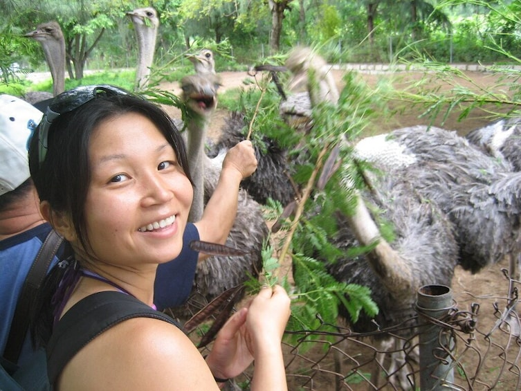 Show item 4 of 10. Monkey Island and Nha Phu Bay Full Day Tour