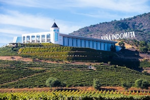 Viña del Mar and Valparaiso Tour from Santiago