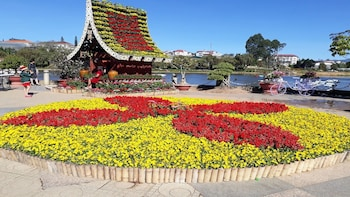 Full Day Dalat Highlights Tour