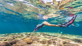 Perth to Exmouth 6-Day Coral Coaster One-Way Adventure Tour