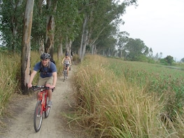 Private Cycling Tour of Hong Kong's New Territories w/Lunch