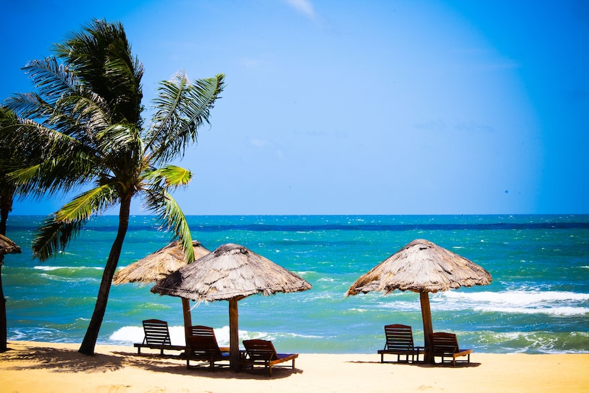 Show item 5 of 10. Discover Phu Quoc National Park and Cua Can River Full-Day