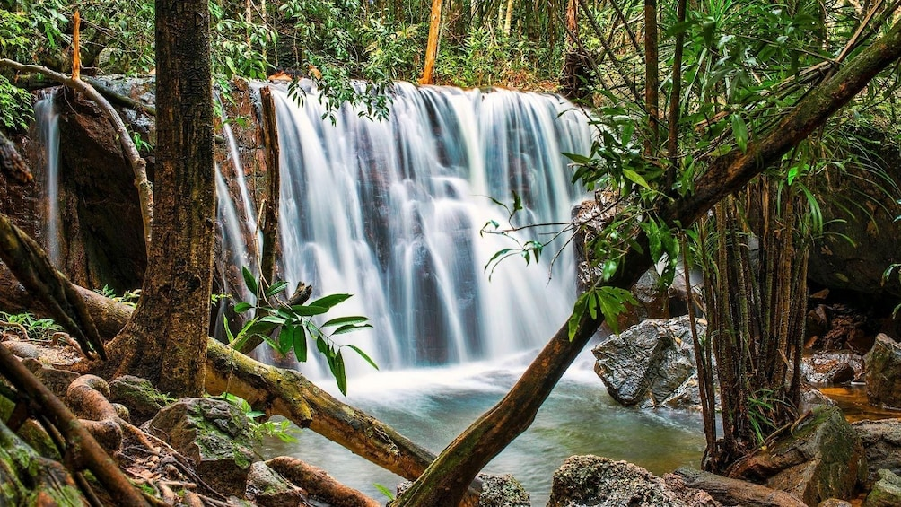Show item 1 of 10. Discover Phu Quoc National Park and Cua Can River Full-Day