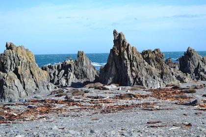 Stony Wellington coast