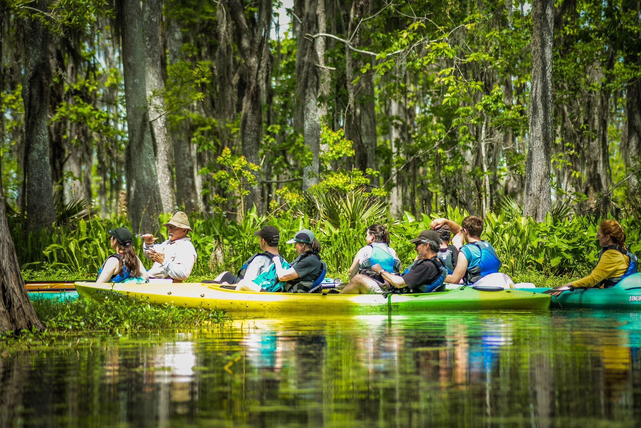 New Orleans group kayaking tour through a swamp