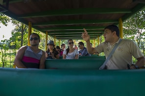 Shuttle from Arenal to Jaco Beach with Crocodile Tour