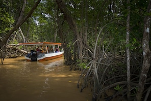 Shuttle from Arenal to Manuel Antonio with Crocodile Tour