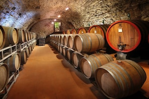 Small group wine experience in the Tuscan countryside