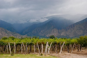 Full-Day Cafayate Sightseeing Tour with Wine Tasting