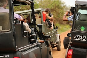 All-Inclusive Yala National Park Afternoon Safari