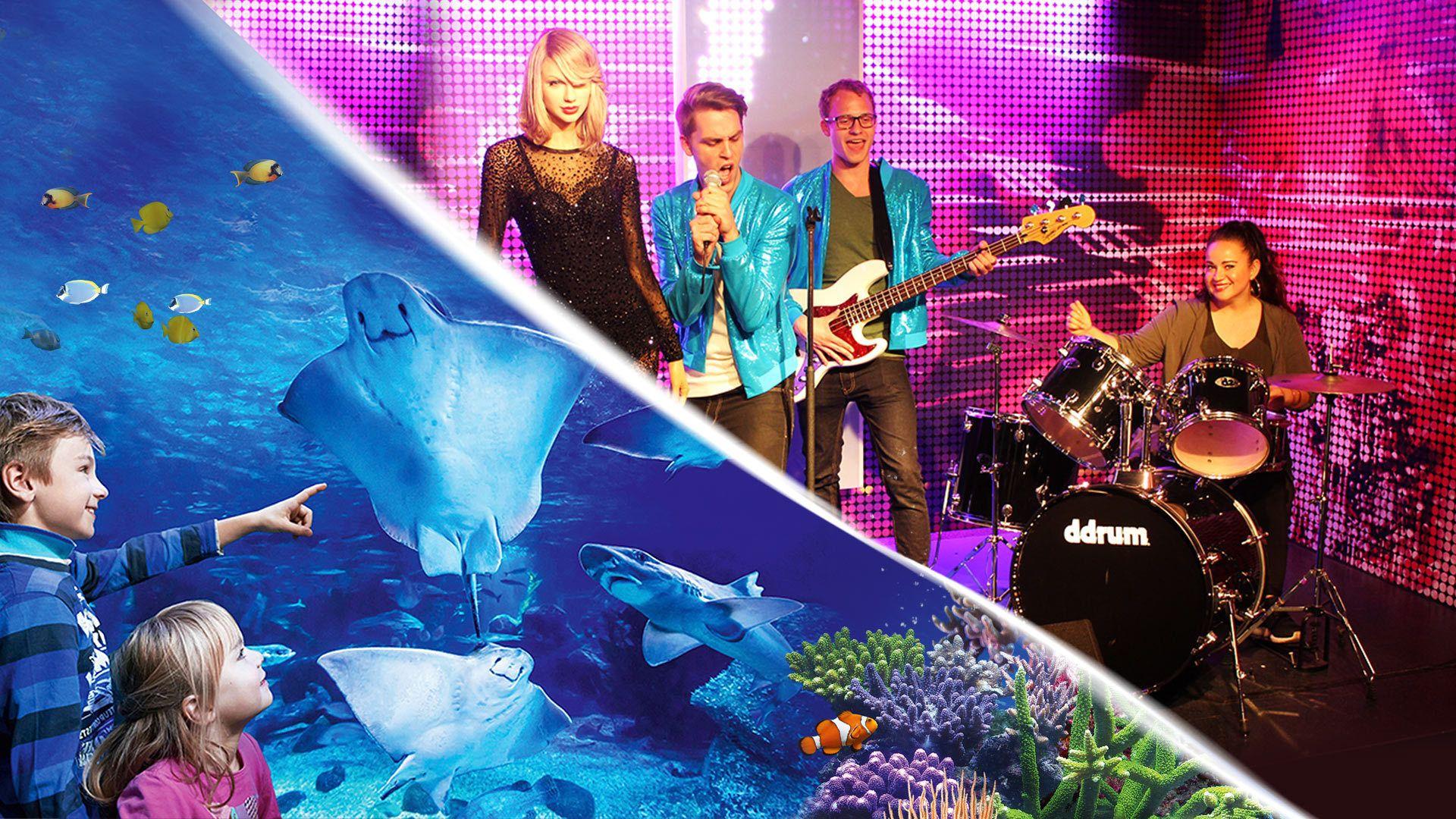 Kombi-Ticket: Madame Tussauds und AquaDom & SEA LIFE Berlin