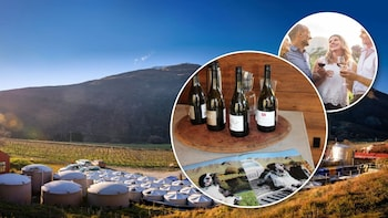 Queenstown Afternoon Wine Tour (Adults Only)
