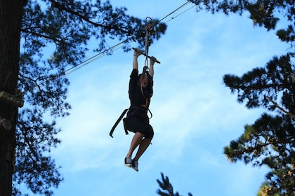 Woman on a rope and pulley in the trees in New Zealand