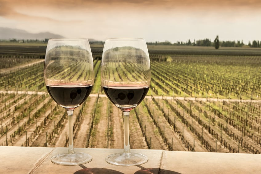 Two glasses of red wine overlooking a vineyard