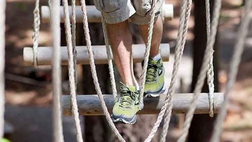 Person walking across a rope bridge at WildPlay Thacher's Adventure Courses in Voorheesville