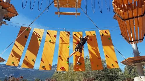 2 Hour Aerial Adventure Park Session