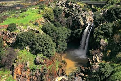 Waterfall in Golan Heights