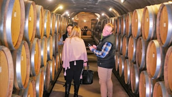 The Wine Trail Tour + Wine Cave Tour