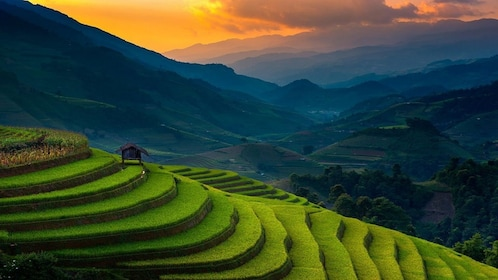 Rice terraces mountain landscape of Sapa Valley