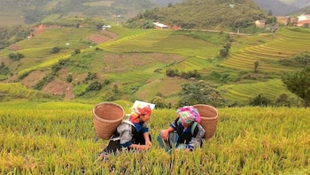 Sapa Walking Mountain View to Riverside Full Day Tour
