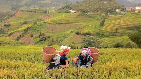 Locals in Sapa