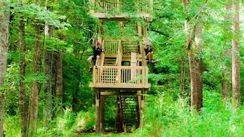 Wetland Zip line Adventure Virginia Beach