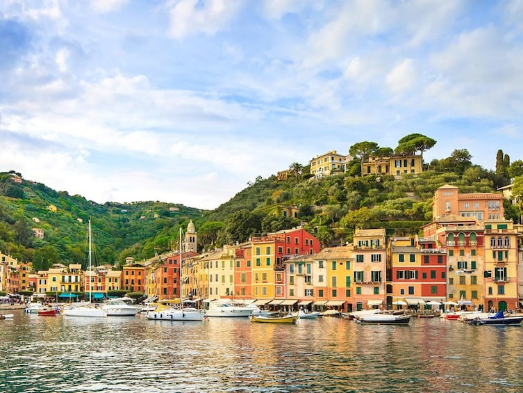 Show item 5 of 5. Portofino Harbour, Italy