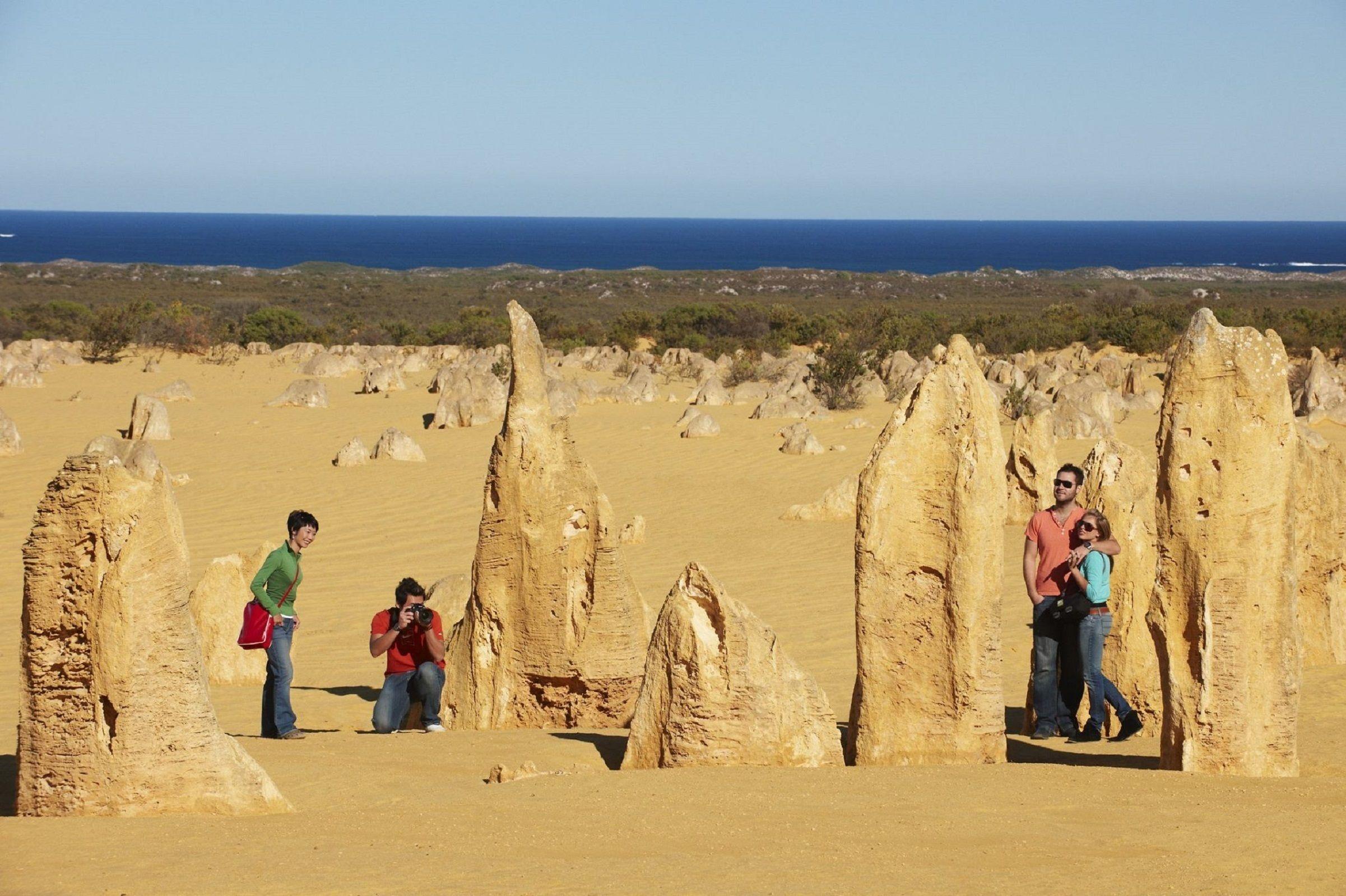 1 Day Pinnacles, Wildlife & Sandboarding