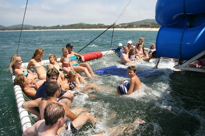 Boat passengers in swim net in New South Wales