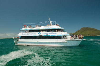 Dolphin Discovery cruise boat in New South Wales