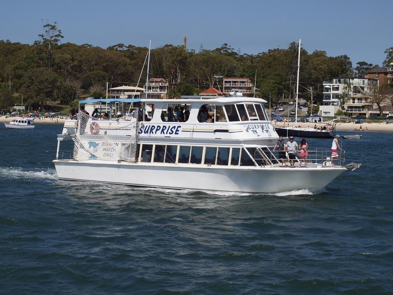 Dolphin Watch Cruise