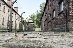 Auschwitz Birkenau Museum Guided Tour with Hotel Pick Up