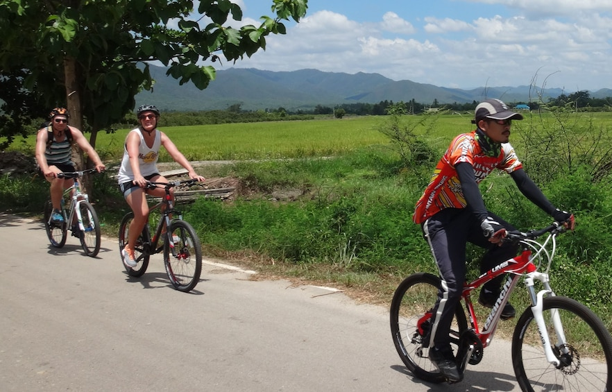 Show item 2 of 2. Bicycling group in Mae Ping Valley