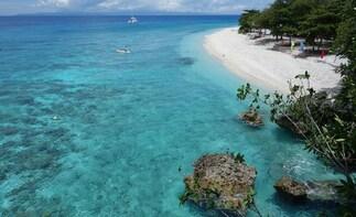 Pamilacan Island Tour
