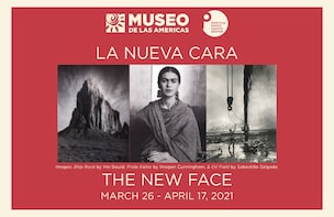 Latin American Art Museum - General Admission Tickets