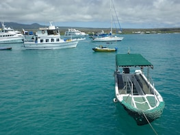 Transfer from Isabela Island to Santa Cruz Island