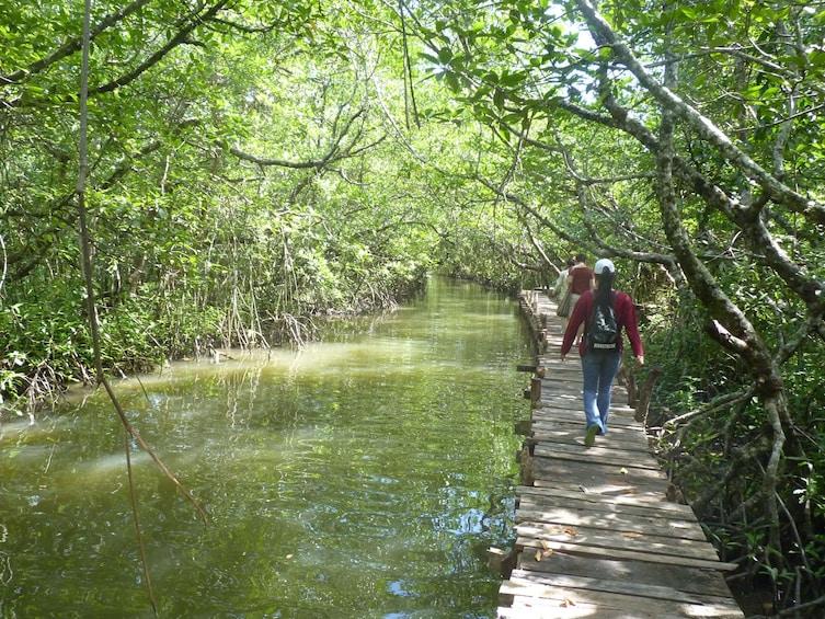 Show item 4 of 10. Full Day Explore Ream National Park - Sihanoukville