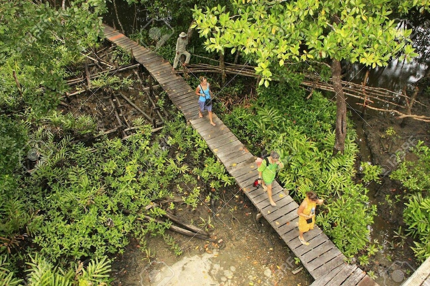 Show item 5 of 10. Full Day Explore Ream National Park - Sihanoukville