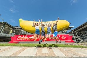 Big Bunch Fun Park Day Pass at The Big Banana Fun Park