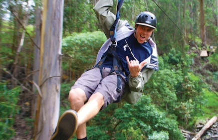 Person on a Zip tour in Hawaii