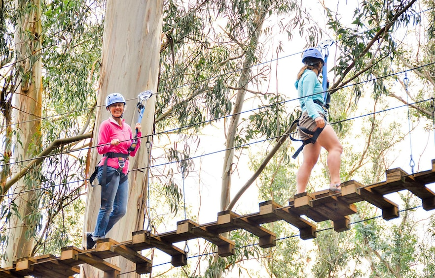 Show item 3 of 6. ZIp tour group crosses a rope bridge in a forest canopy