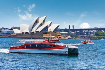 Cruise on Sydney Harbour