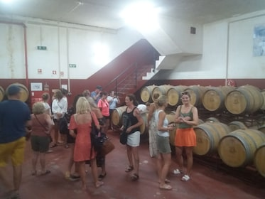 Tour group at a winery surrounded by wine barrels in Portugal
