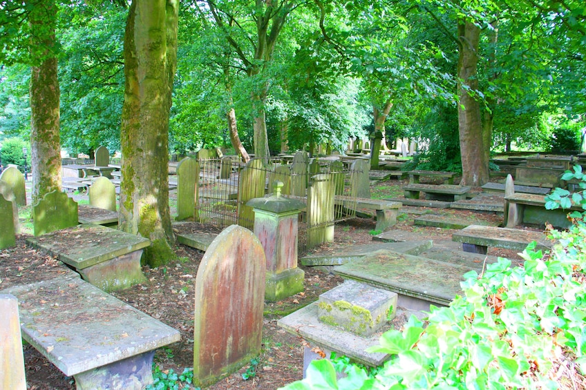 Show item 2 of 4. Old cemetery in England