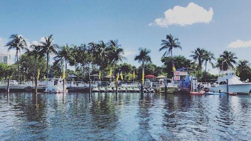 Miami Parasail Ride with Miami Watersports