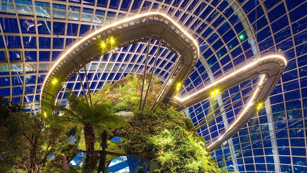 Show item 3 of 10. Gardens by the Bay Double Conservatories (Direct Admission)