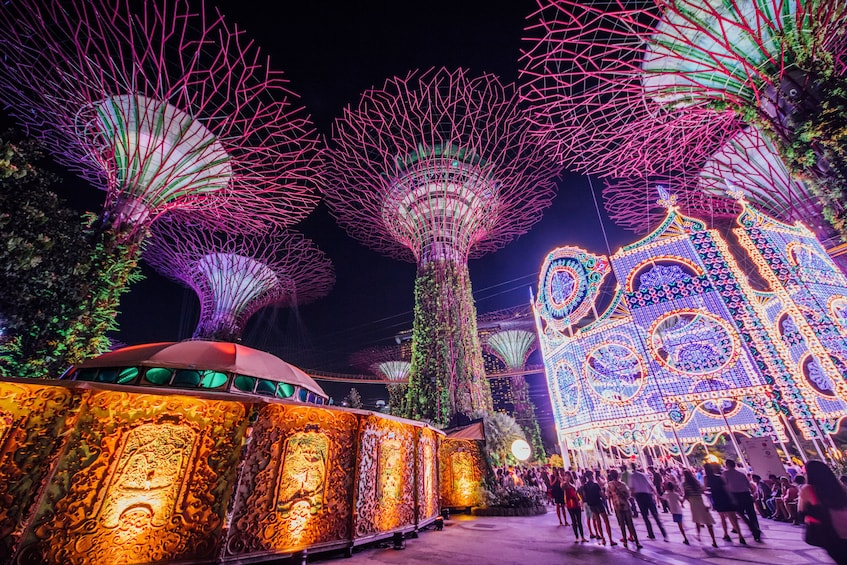 Show item 2 of 10. Gardens by the Bay Double Conservatories (Direct Admission)