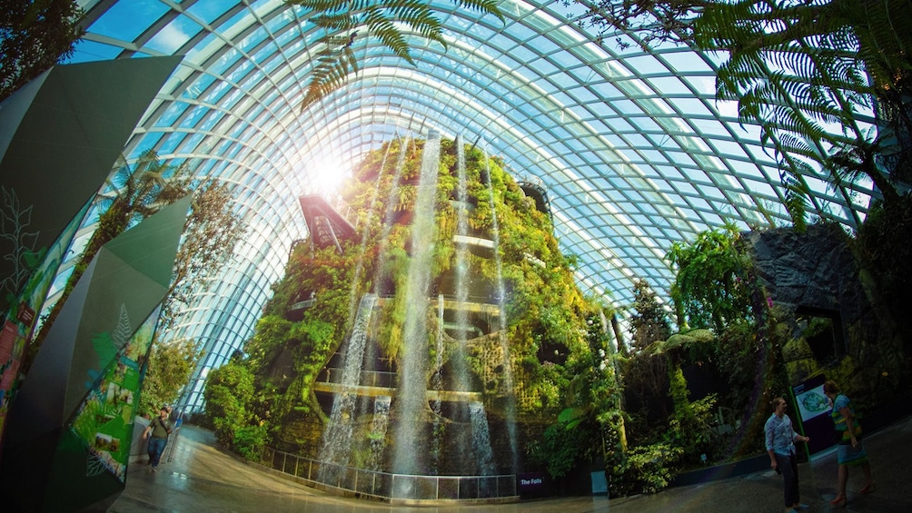 Show item 1 of 10. Gardens by the Bay Double Conservatories (Direct Admission)