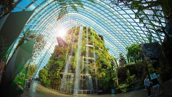 Gardens by the Bay Double Conservatories (Direct Admission)